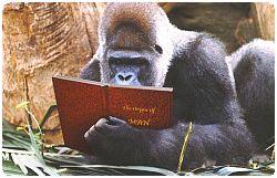 leyendo.jpg